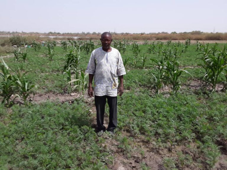 Emmanuel Konseiga vid sin morotsodling i Burkina Faso, 2021