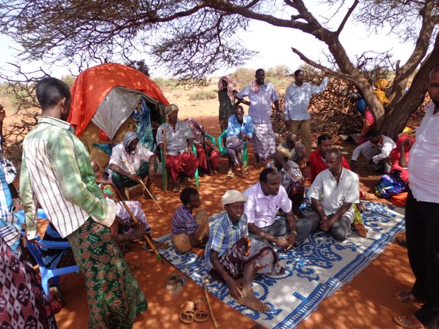 Tjugotal människor står och sitter på filtar i skuggan av ett träd.