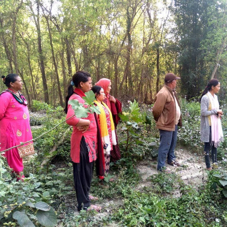 En utbildningsgrupp står i en skogsglänta.